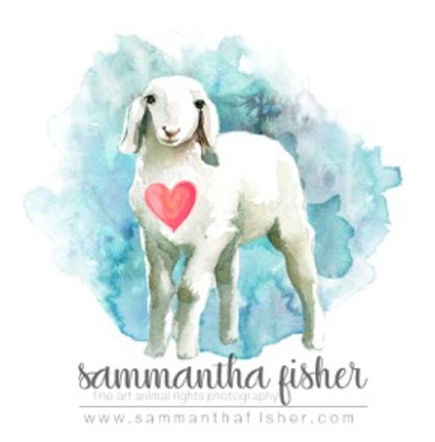 Sammantha Fisher